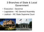 3 branches of state local government