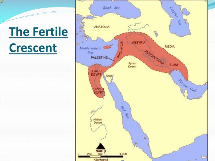 The Fertile