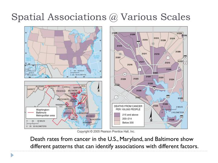 Spatial Associations @ Various Scales