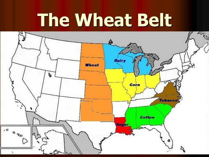 The Wheat Belt