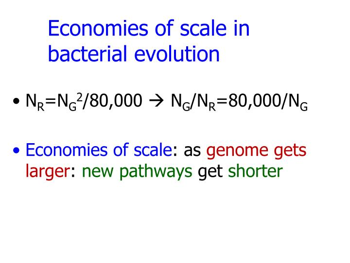 Economies of scale in