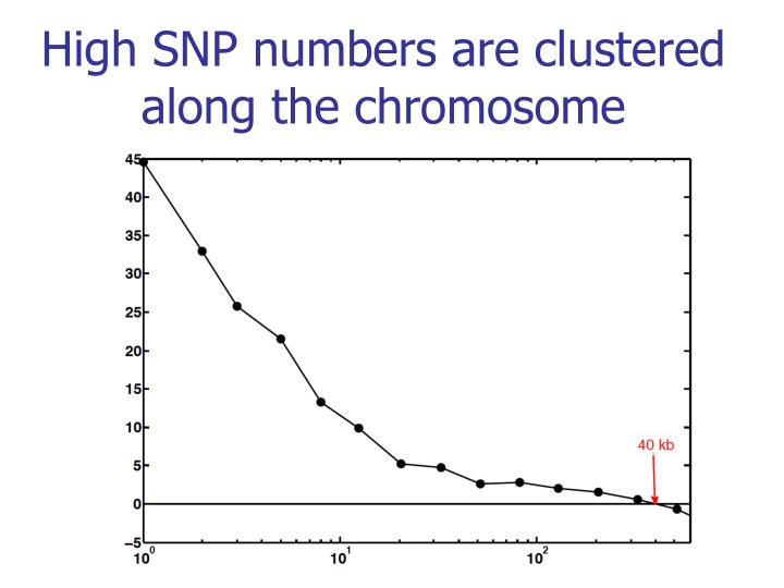 High SNP numbers are