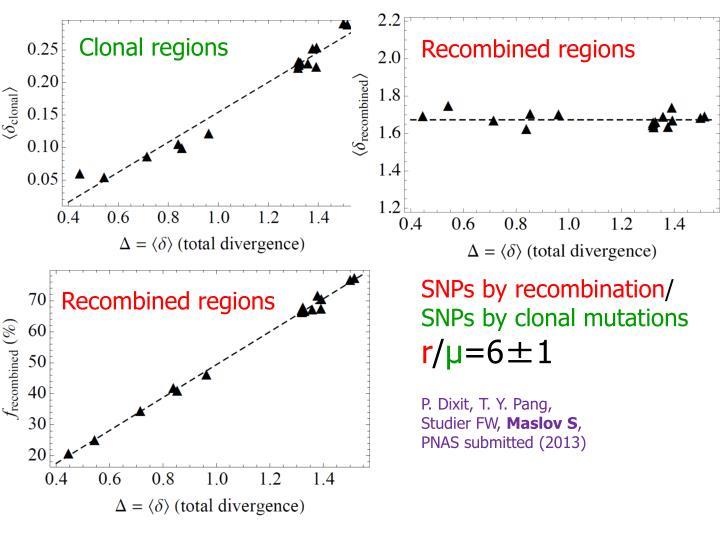 Clonal regions