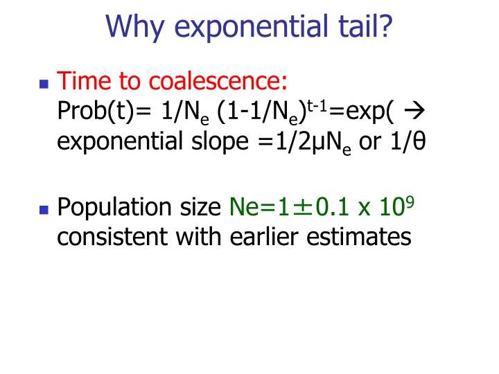 Why exponential tail?