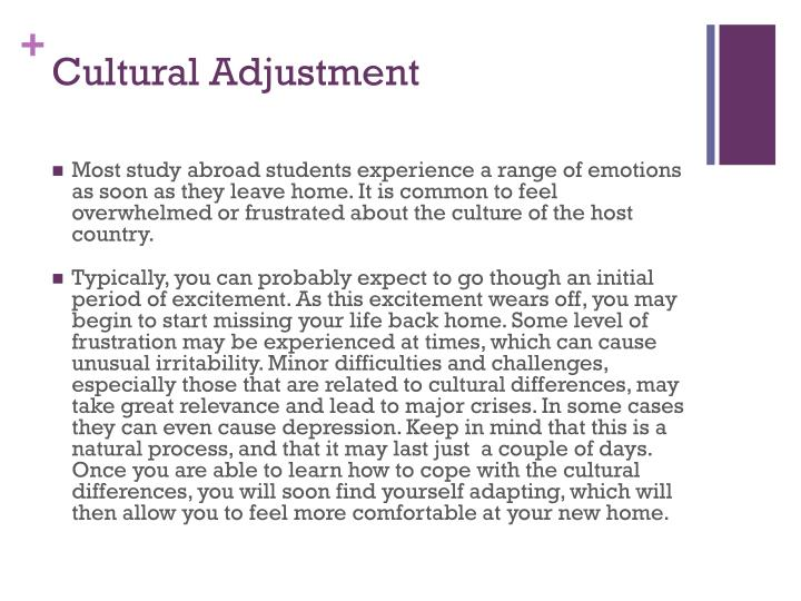 Cultural Adjustment