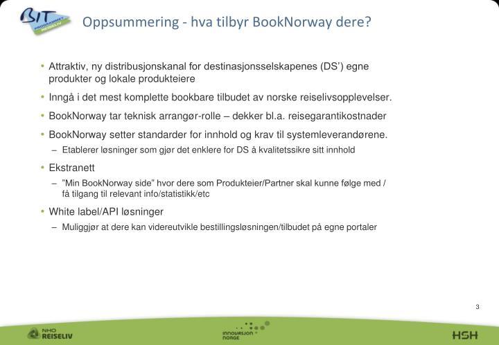 Oppsummering - hva tilbyr BookNorway dere?