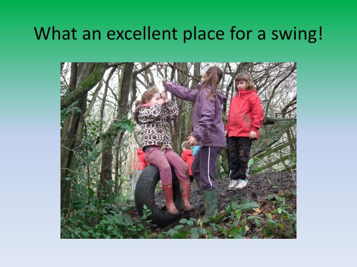 What an excellent place for a swing!