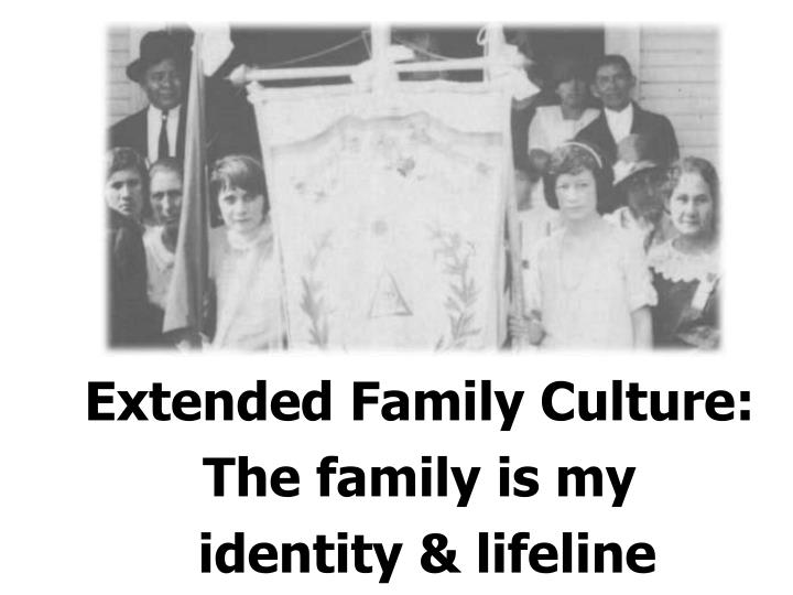 Extended Family Culture: