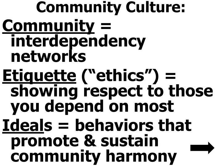 Community Culture: