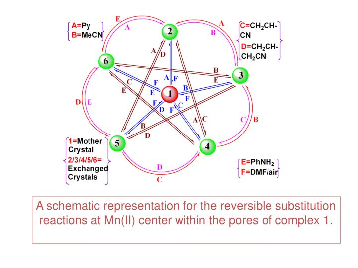 A schematic representation for the reversible substitution