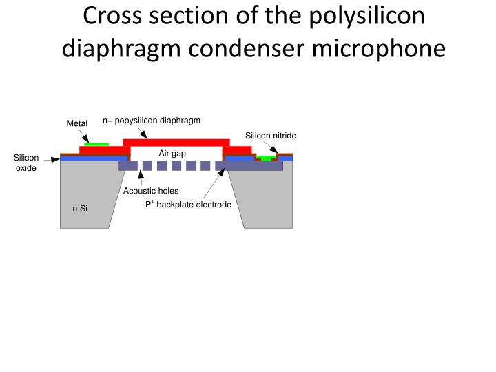 Cross section of the