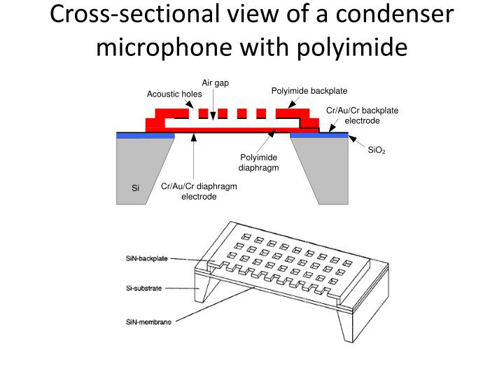 Cross-sectional view of a condenser microphone with polyimide