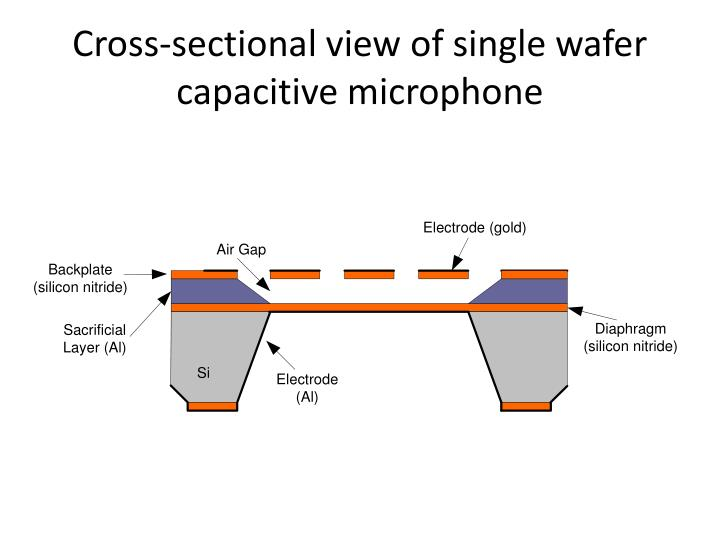 Cross sectional view of single wafer capacitive microphone