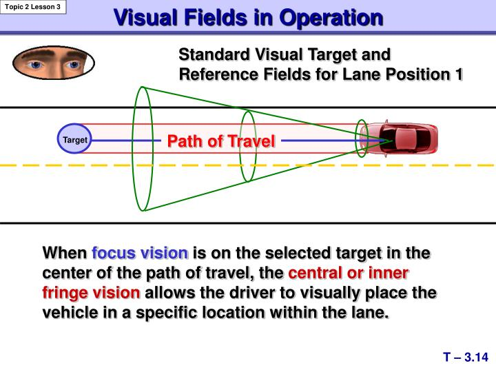 Visual Fields in Operation