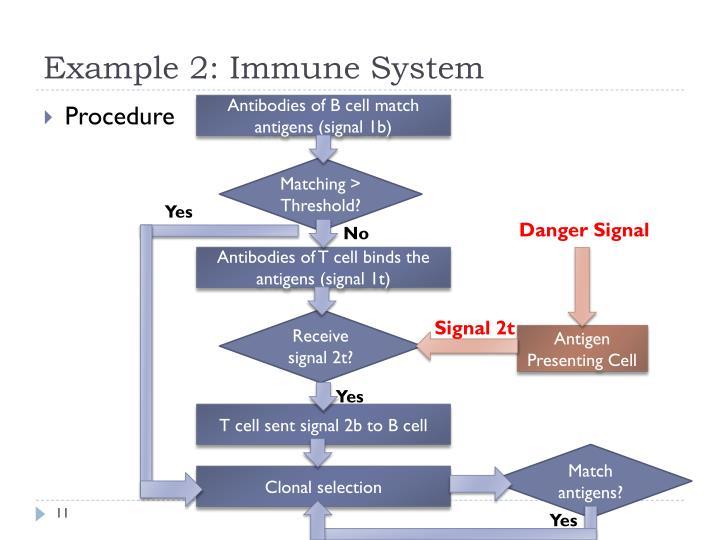 Example 2: Immune System