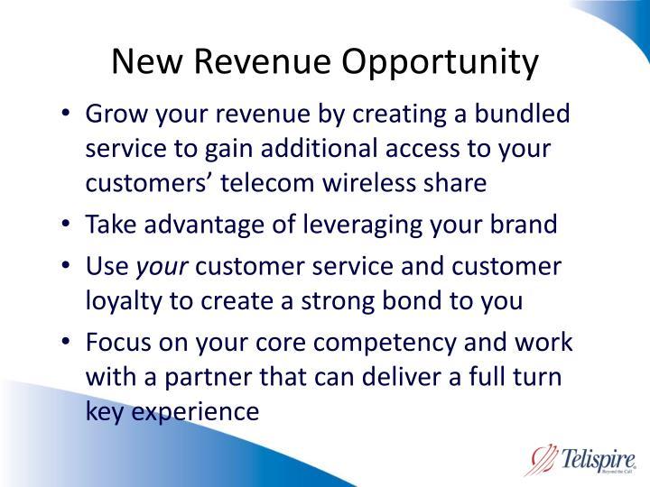 New Revenue Opportunity