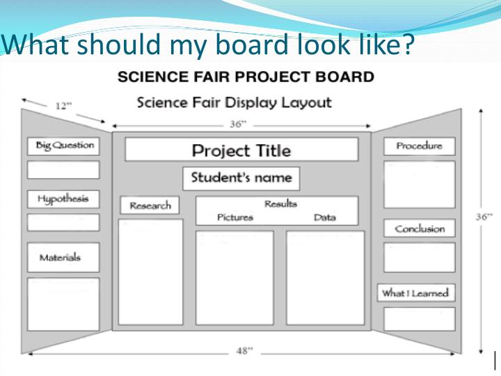 How does a science fair board look like