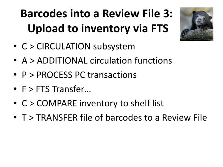 Barcodes into a Review File 3: