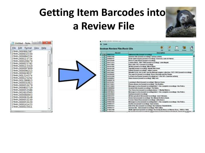 Getting Item Barcodes into