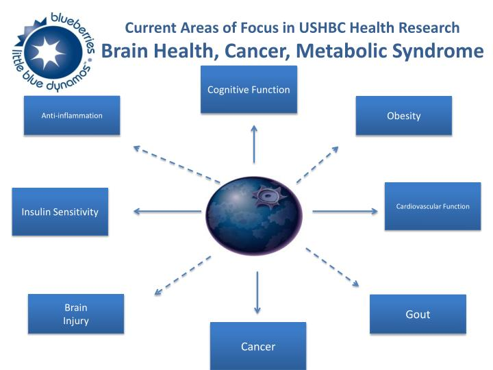 Current Areas of Focus in USHBC Health Research