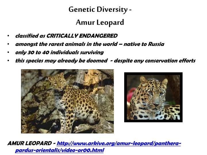 Genetic Diversity -