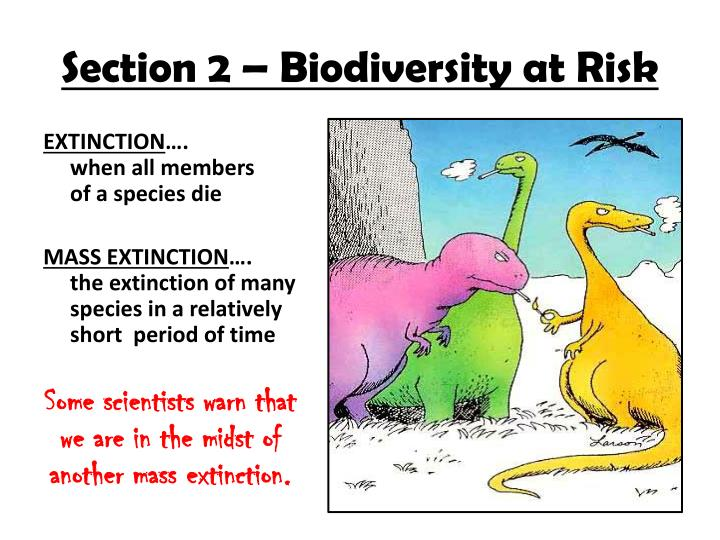 Section 2 – Biodiversity at Risk