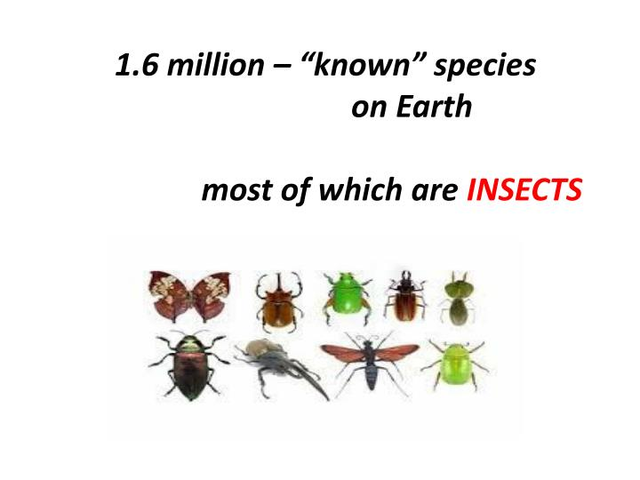 "1.6 million – ""known"" species"