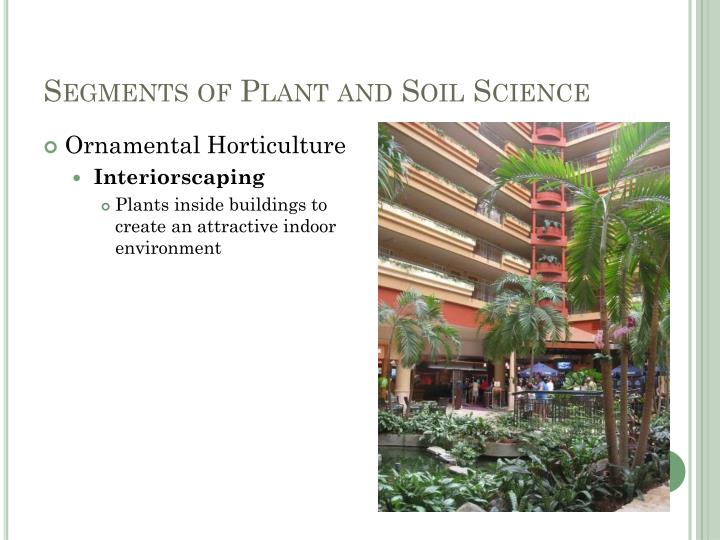 Segments of Plant and Soil Science