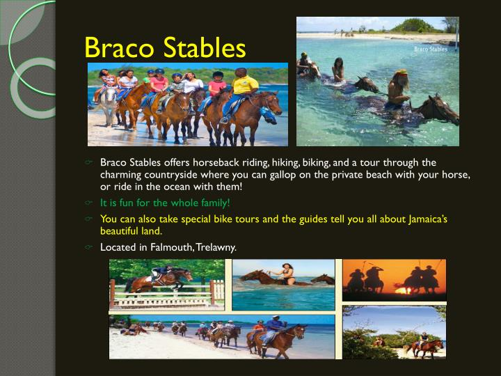 Braco Stables