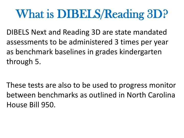 What is DIBELS/Reading 3D?