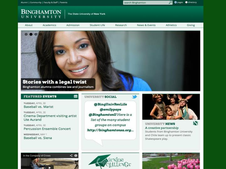 Binghamton edu analytics google