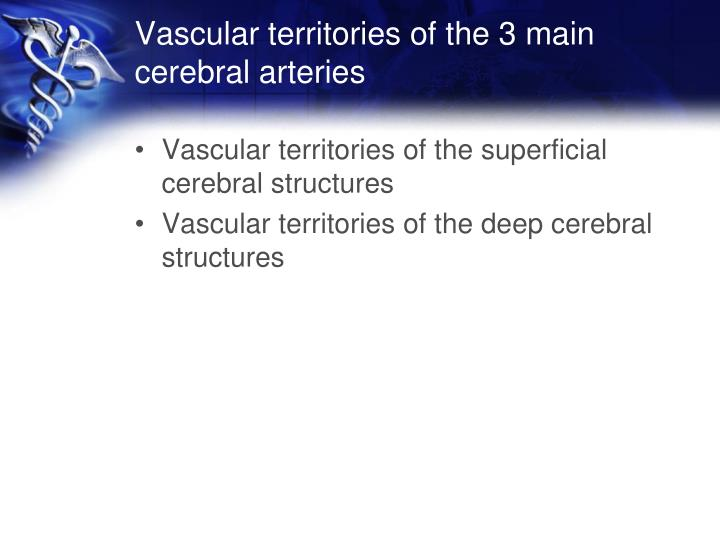 Vascular territories of the 3 main cerebral arteries