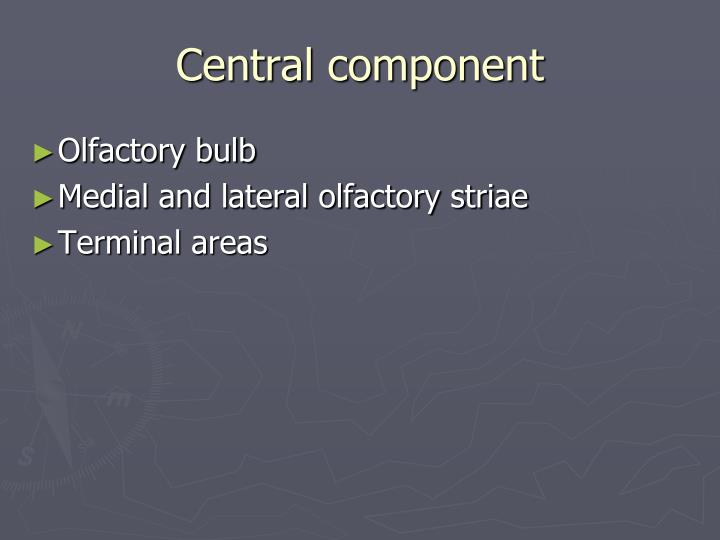 Central component