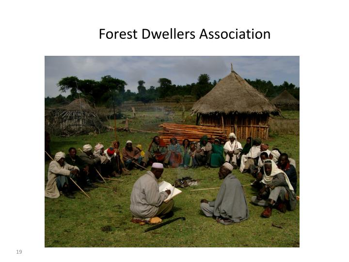 Forest Dwellers Association