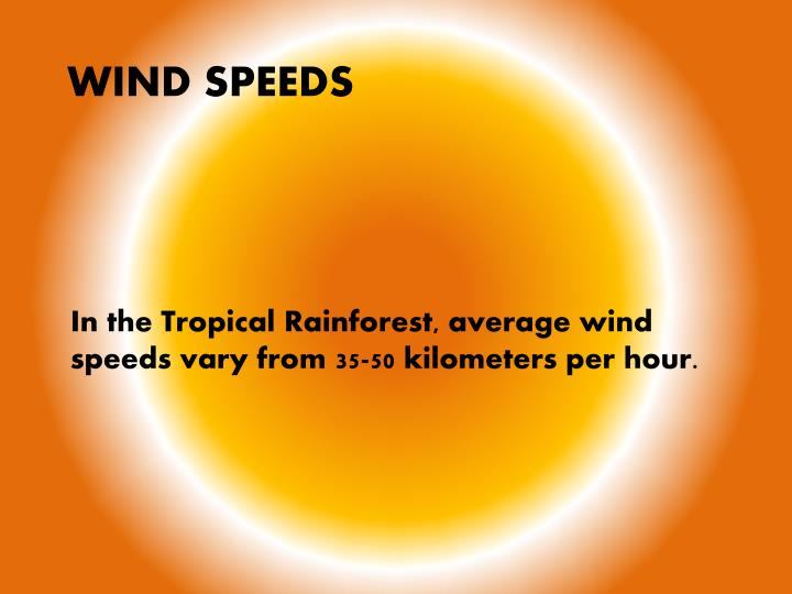In the Tropical Rainforest, average wind speeds vary from 35-50 kilometers per hour.