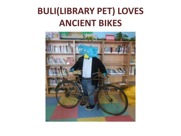 BULI(LIBRARY PET) LOVES