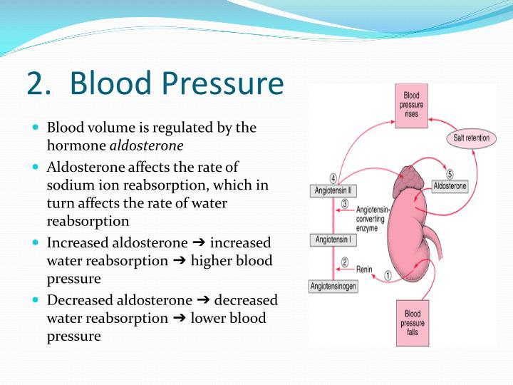 2.  Blood Pressure