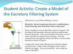 student activity create a model of the excretory filtering system