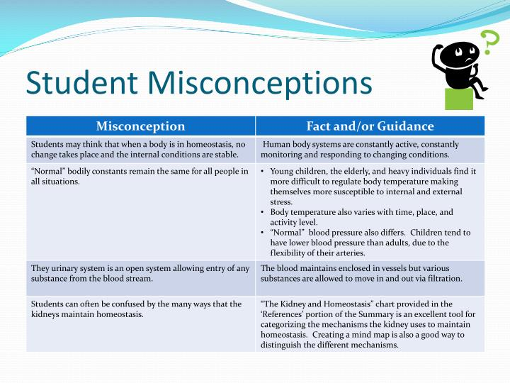 Student Misconceptions