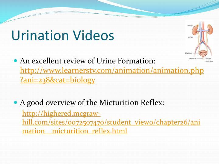Urination Videos