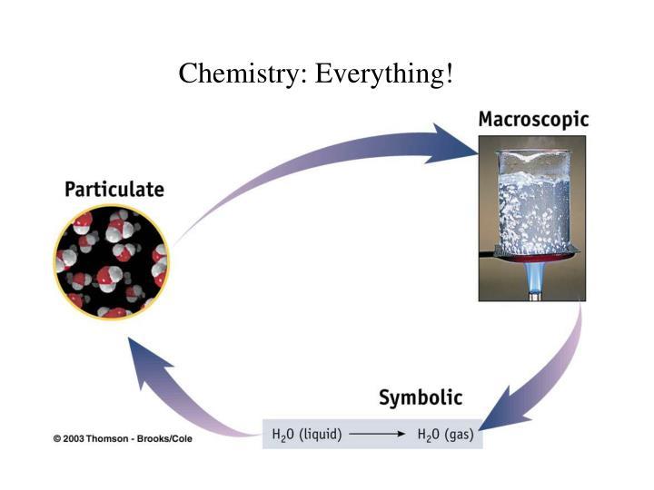 Chemistry: Everything!