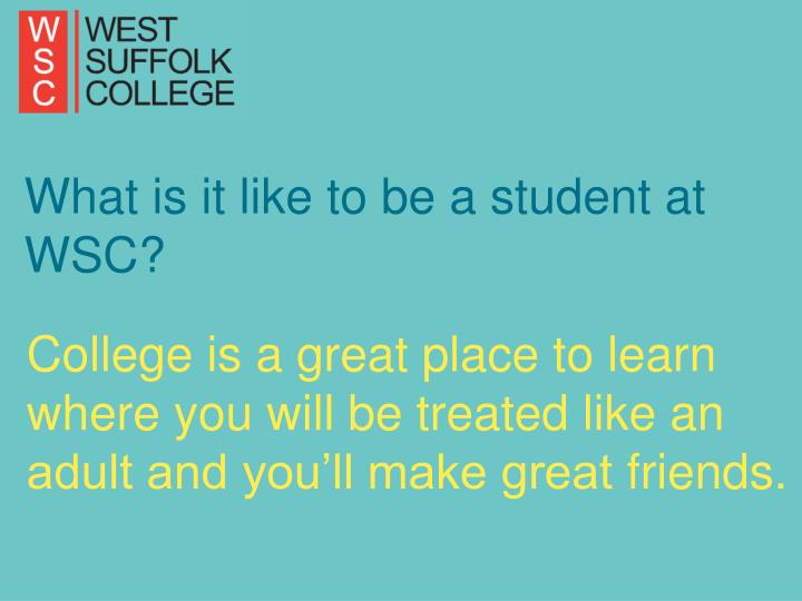 What is it like to be a student at WSC?