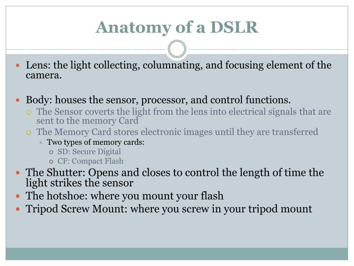 Anatomy of a DSLR
