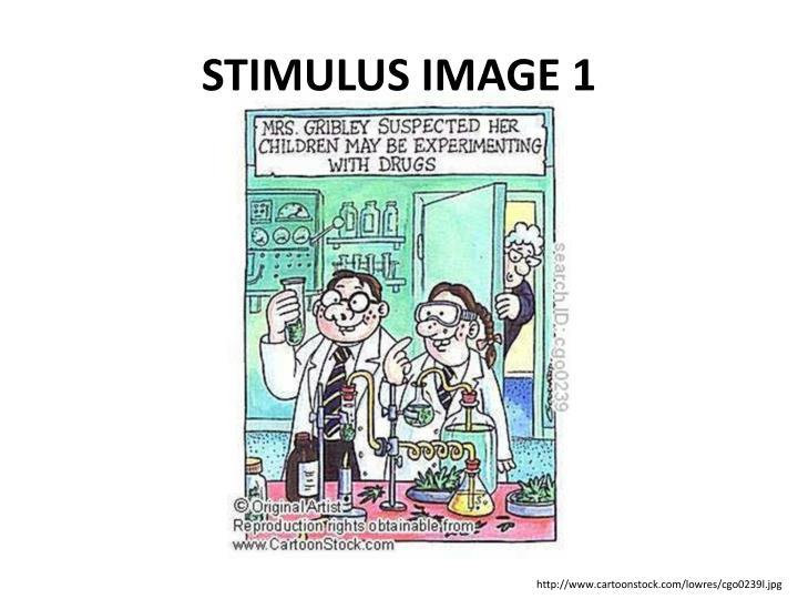 STIMULUS IMAGE 1