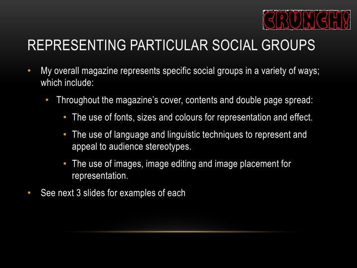 Representing Particular Social Groups
