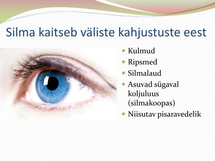 Silma kaitseb väliste kahjustuste eest