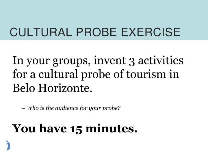 CULTURAL PROBE EXERCISE