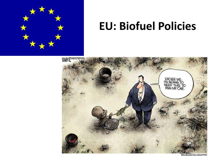 EU: Biofuel Policies