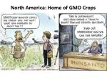 north america home of gmo crops