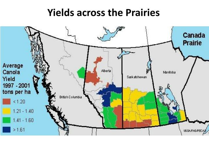 Yields across the Prairies
